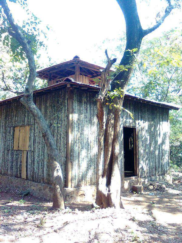 Phansad - forest bamboo hut