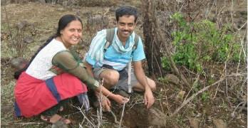 lohagad tree plantation