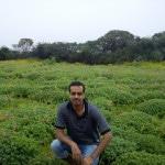 Kaas plateau visit – the misty flowers