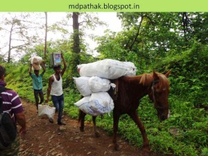 material is carried on horses to village peth at foot of fort kothaligad