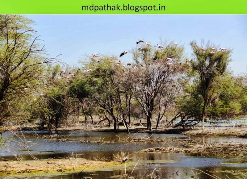 chitra balak colony at bhigwan