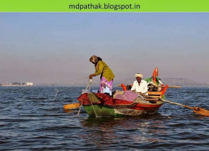 fish catching chilapia bhigwan