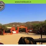 Jungle safari – Ranthambore National Park, Sawai Madhopur, Rajasthan