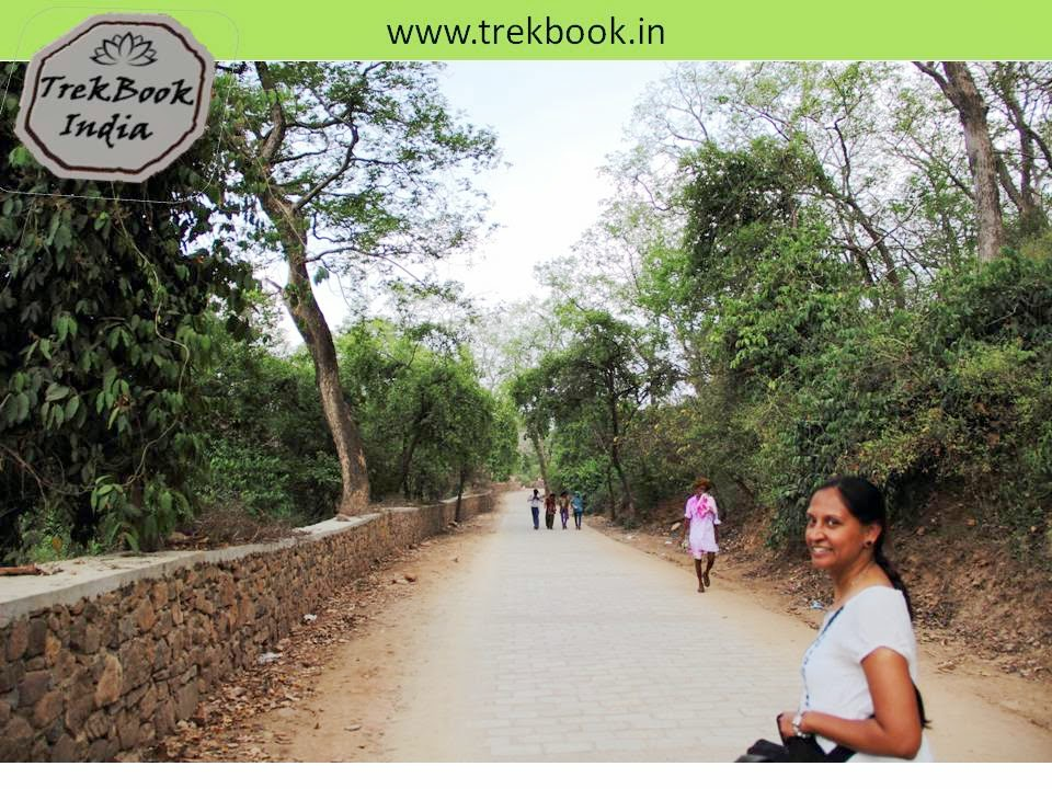 on the way to fort ranthambore sawai