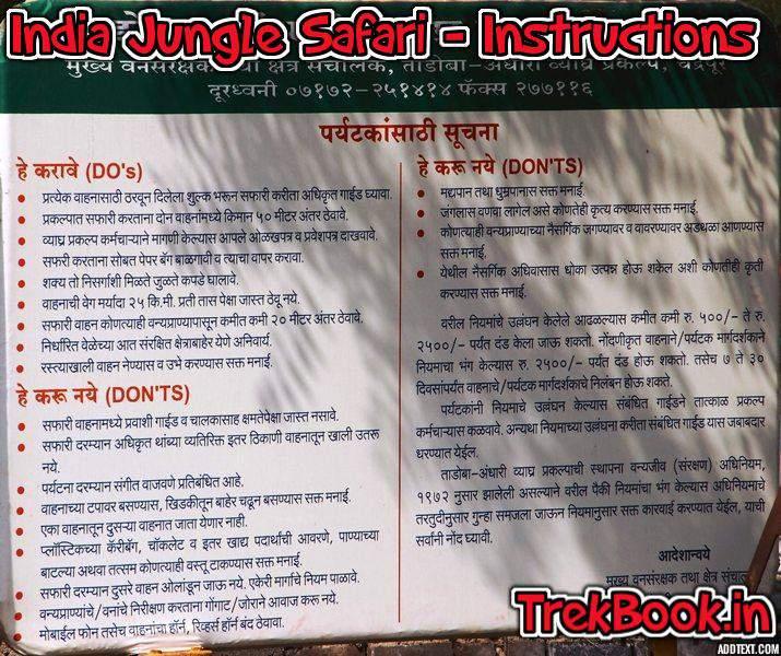 Jungle Safari in India do & dont