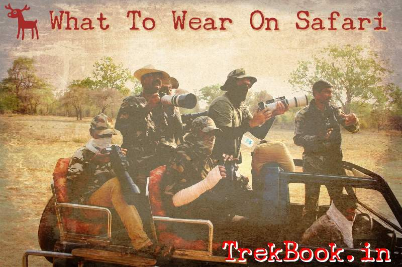 what to wear in a jingle safari india
