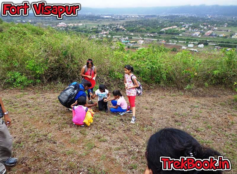 tree plantation program fort visapur