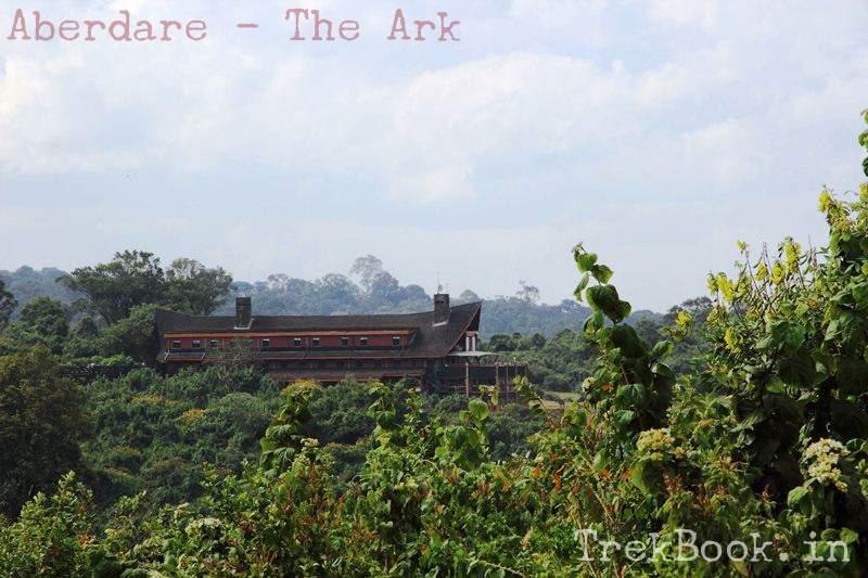 Aberdare - The Ark