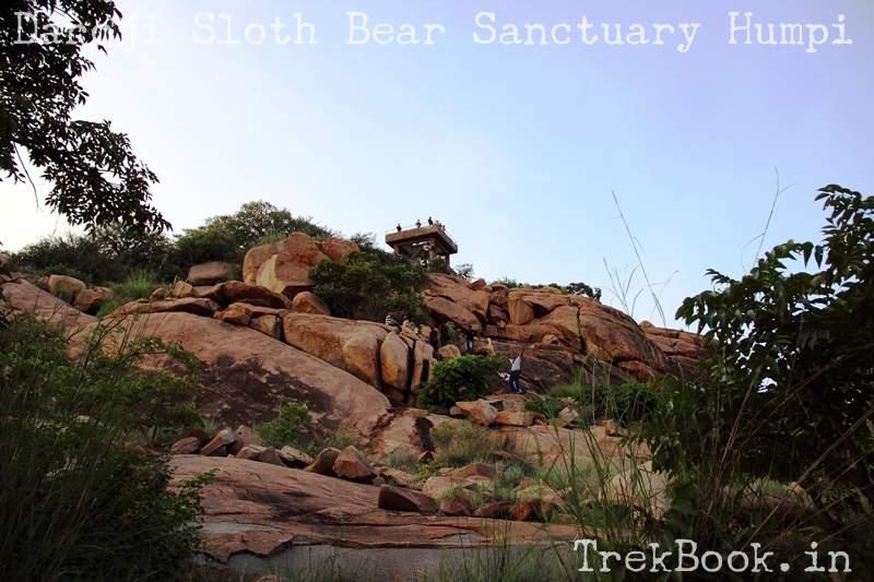 Observation tower at Daroji Sloth Bear Sanctuary Humpi