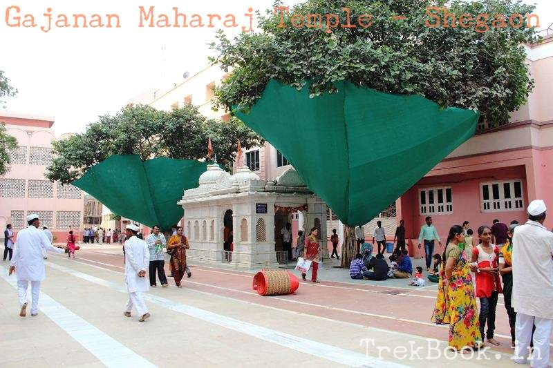 temple area is maintained clean seee trees