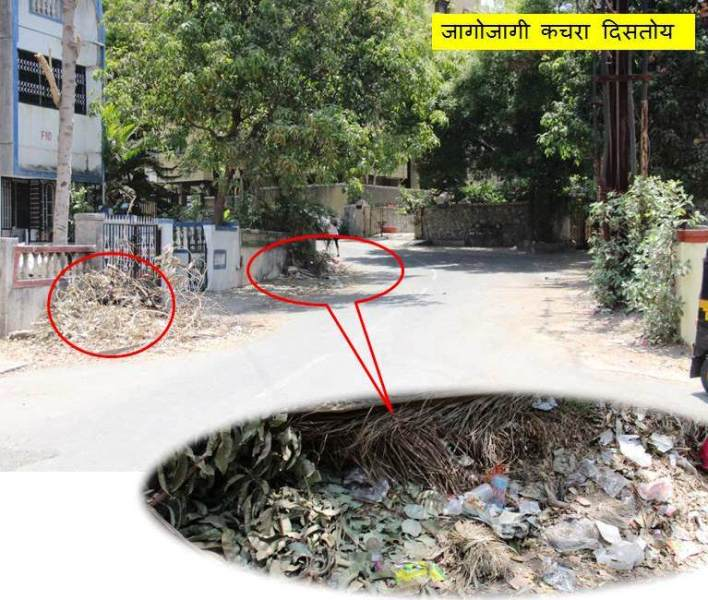 before cleanmyindia drive plastic and tree trunks