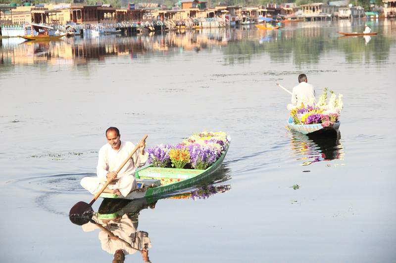 floating gardens dal lake