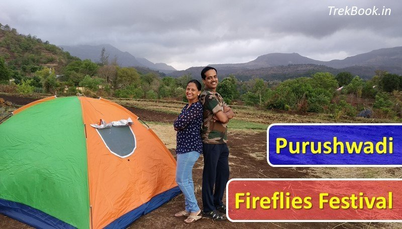 Purushwadi fireflies festival dates and review