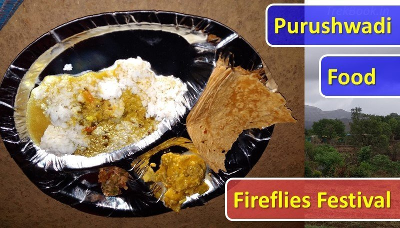 Purushwadi fireflies festival organic food dinner lunch