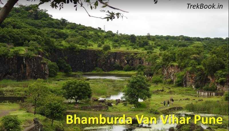 monsoon trip of Bhamburda Van Vihar Pune
