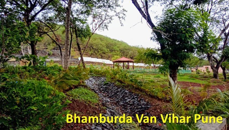 places for couples in pune - Bhamburda Van Udyan